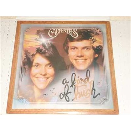 The Carpenters - A Kind Of Hush Vinyl LP For Sale