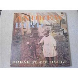 Andrew Bird - Break It Yourself LP Vinyl Record For Sale