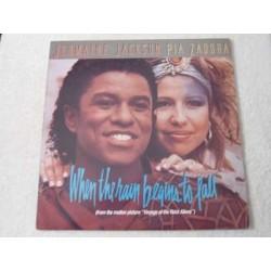 "Jermaine Jackson / Pia Zadora - When The Rain Begins To Fall PROMO 12""Single Vinyl Record For Sale"