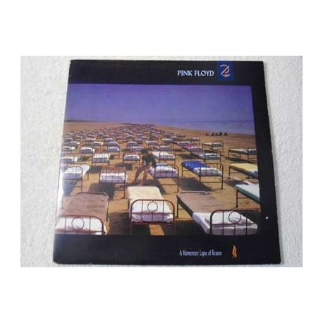 Pink Floyd - Momentary Lapse Of Reason Vinyl LP Record For Sale