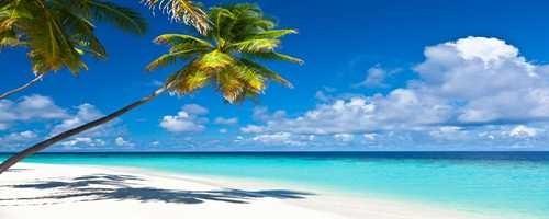 Hawaiian And Island Music