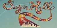 Sugar Hill Records Logo - Vinyl Records For Sale On Sugar Hill Records Label